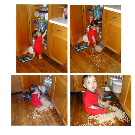 i can get the cheerios myself, mom