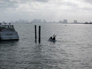 Kayaking on Biscayne Bay